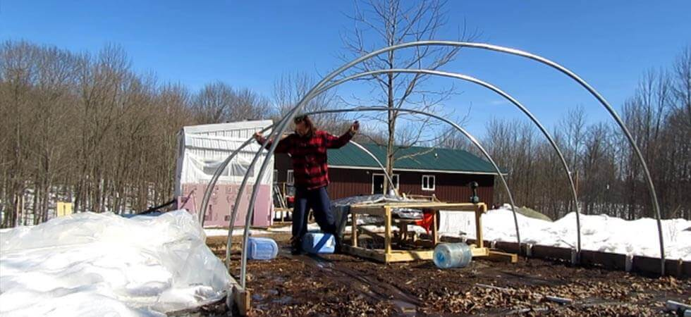setting up the hoops for the hoop house