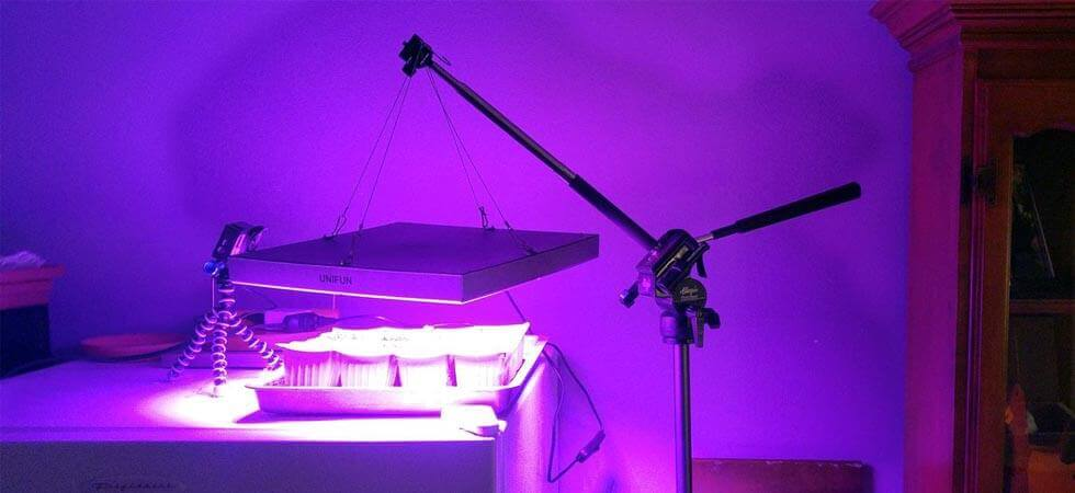 GREENHOUSE GROW LIGHTS: Choosing the best grow Light for efficient growing