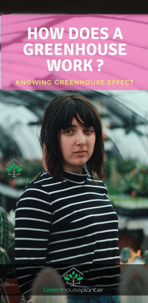 How does a greenhouse works