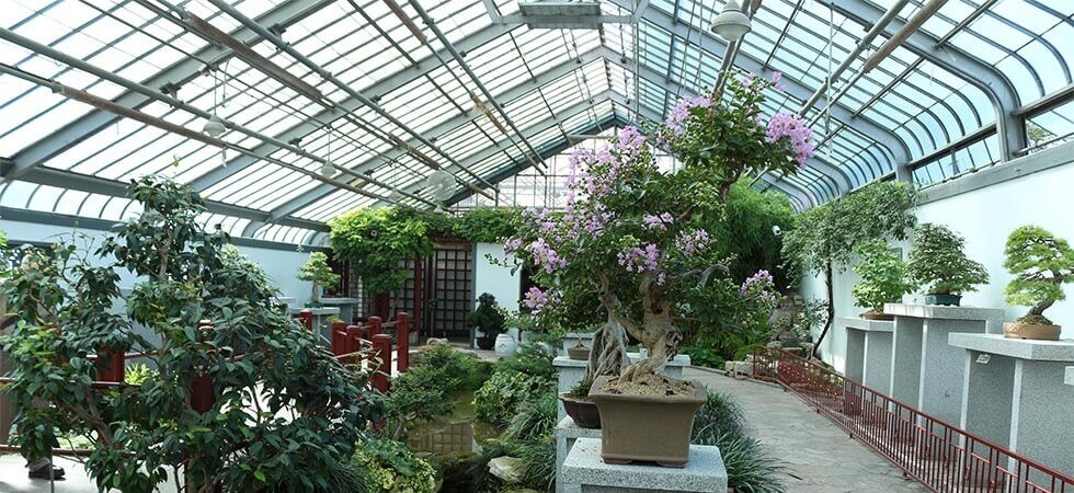 How to keep a greenhouse cool in the desert or hot summer