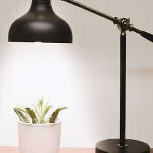 How-to-use-LED-Growlights-for-plants-indoor-gardening-featured-image-min
