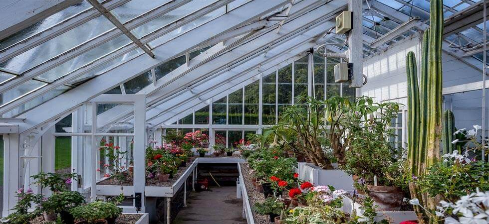 """What is Greenhouse Farming?"": Greenhouse Farming is the process of cultivating crops and vegetable in a greenhouse ecosystems environment."