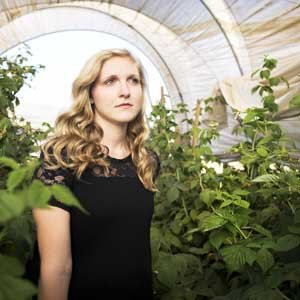 Why plants grow faster in a greenhouse?
