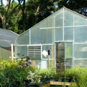 Green House Glazing Material types and selection based on requirement.