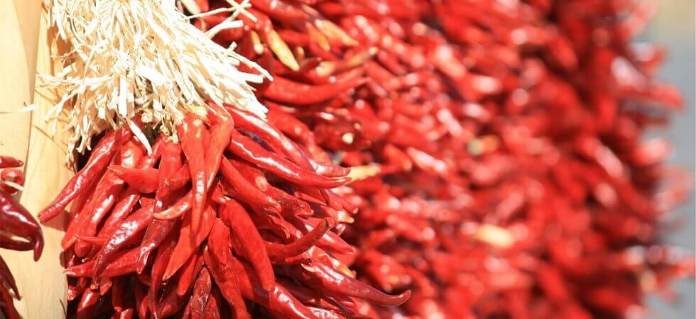 Drying Chili peppers for storing