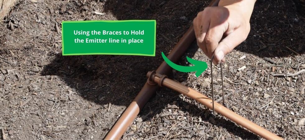 Using Braces to hold the emitter line in place