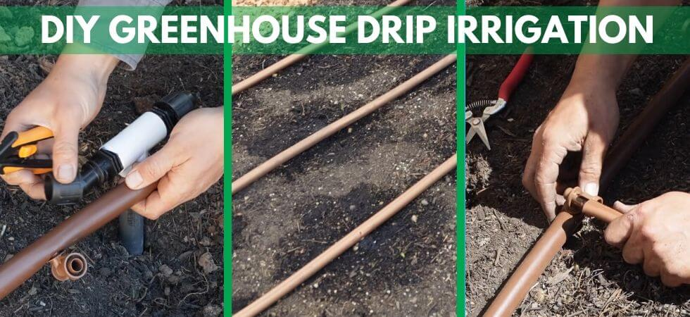 a complete guide to DIY Greenhouse drip Igrriation system