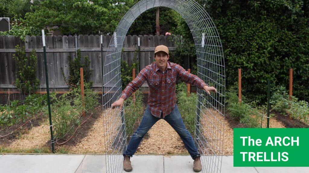 The arch trellis is perfect for growing tomatoes, squash and cucumbers
