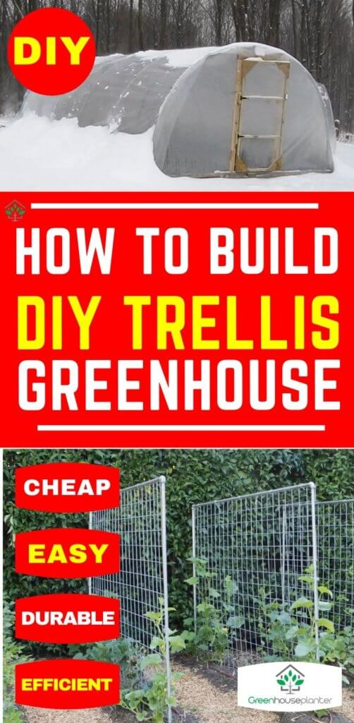 how to make DIY trellis for greenhouse vegetables and fruits